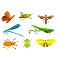 Insects in origami paper elements vector image