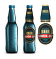 beer-mock-up-setblue bottle without a label vector image