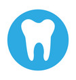 round icon tooth cartoon vector image