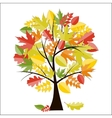 Shiny Autumn Natural Tree Background vector image vector image
