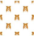 dog collie breed scottish shepherd muzzle vector image