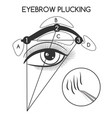 eyebrow plucking concept vector image