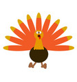 turkey icon with feathers vector image
