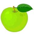 fruit apple vector image vector image