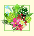 tropical plants banner exotic tropic design vector image