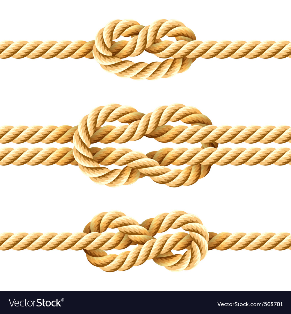Rope knots vector