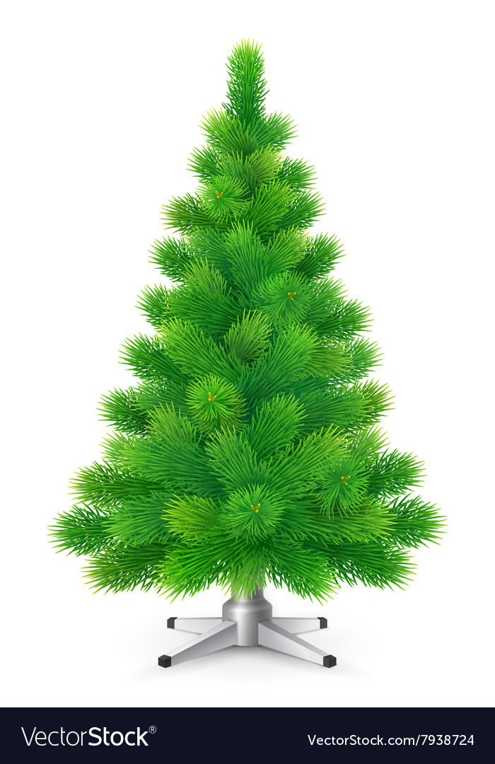 Green fluffy christmas tree with cones vector