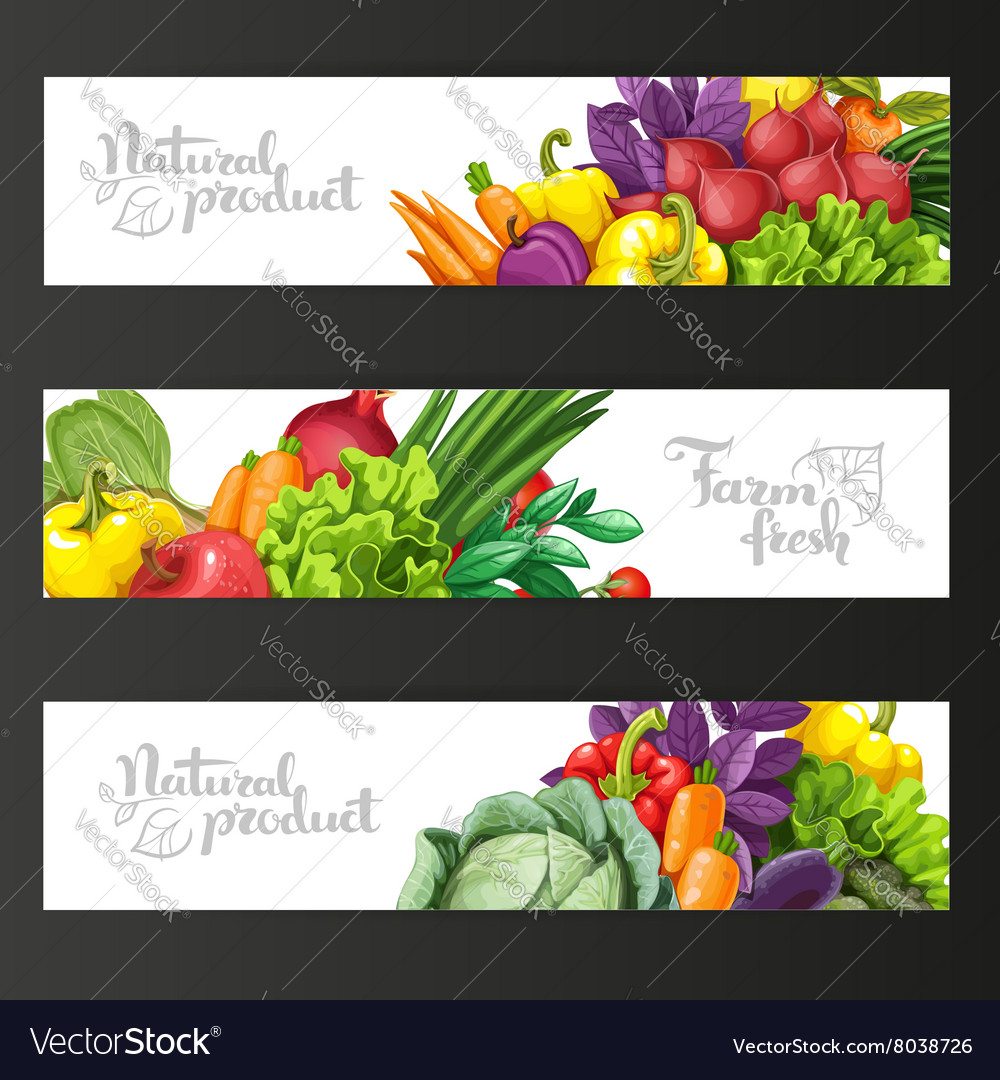 Three horizontal banners with fresh fruits and vector