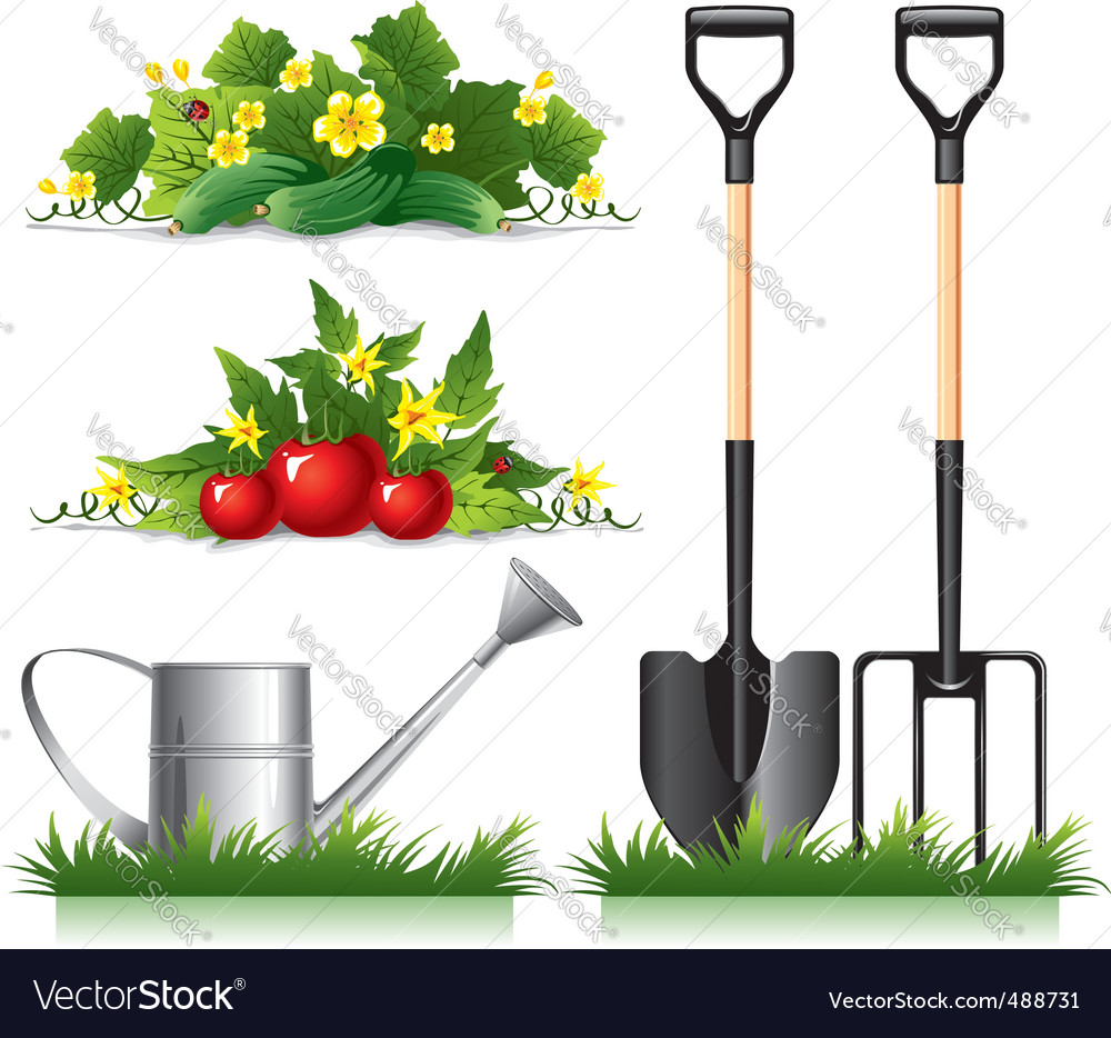 Gardening related items vector