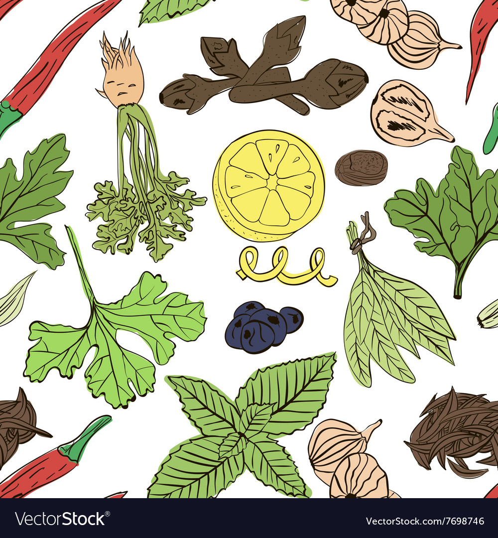 Hand drawn seamless pattern of spices vector