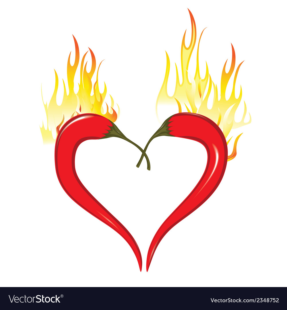 Fire heart of chili peppers hot valentine love vector