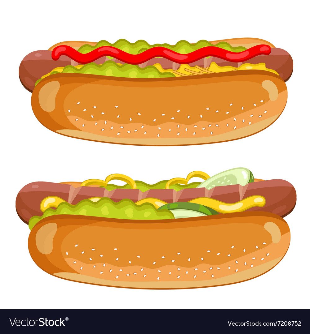 Hot dog on white background vector