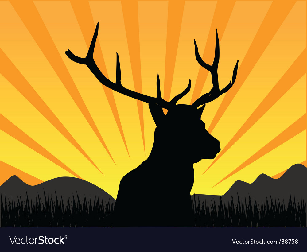 Deer and nature vector