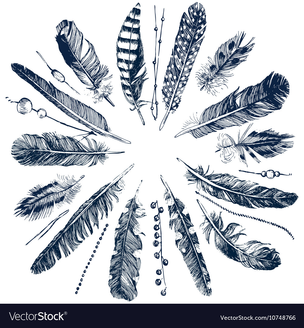 Tribal theme background with feathers vector