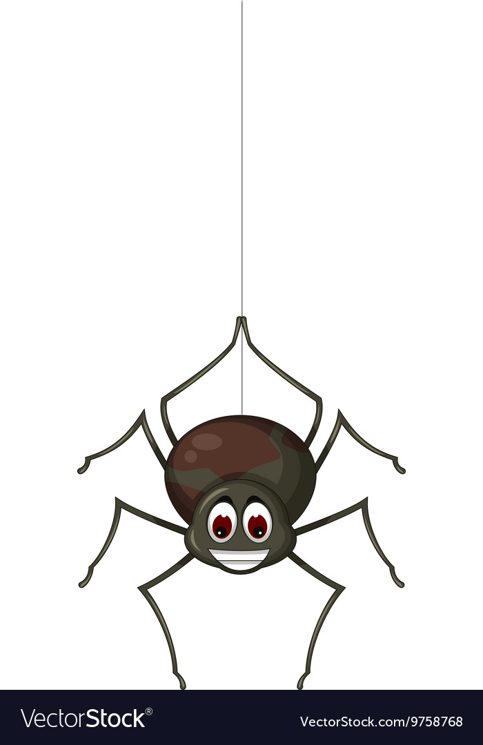 Cute spider cartoon for you design vector