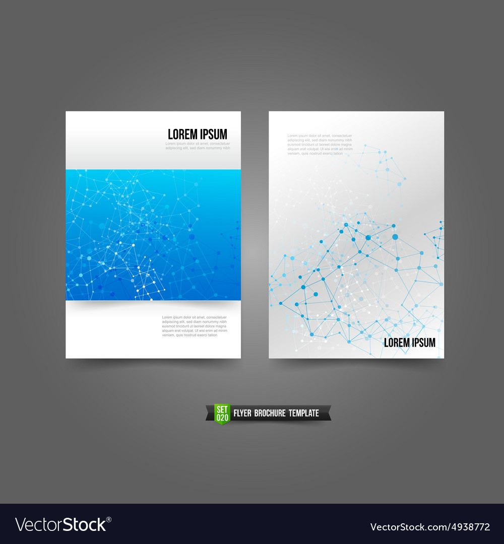 Flyer brochure background templated 020 network vector