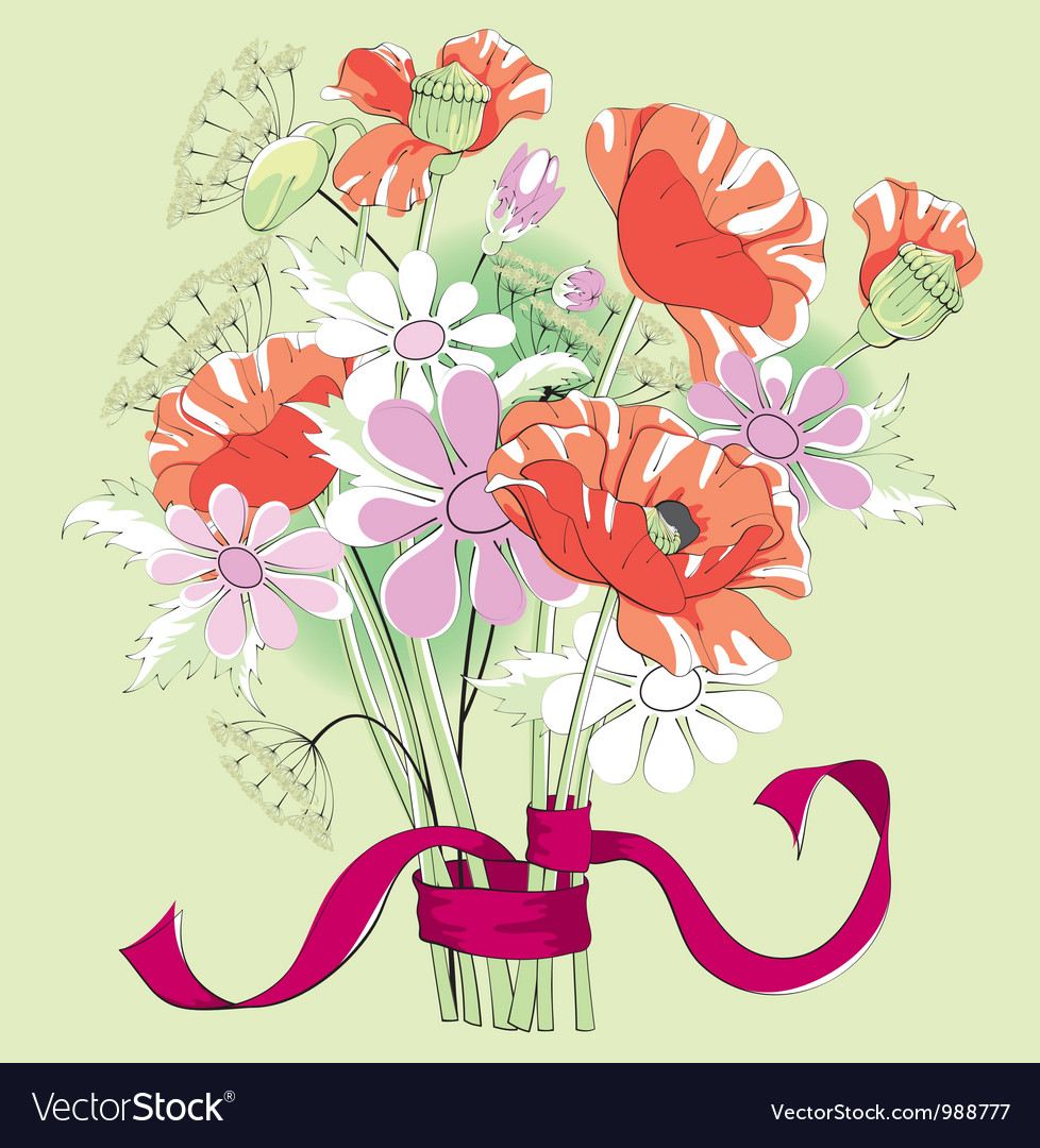 Bouquet of poppies and daisies vector