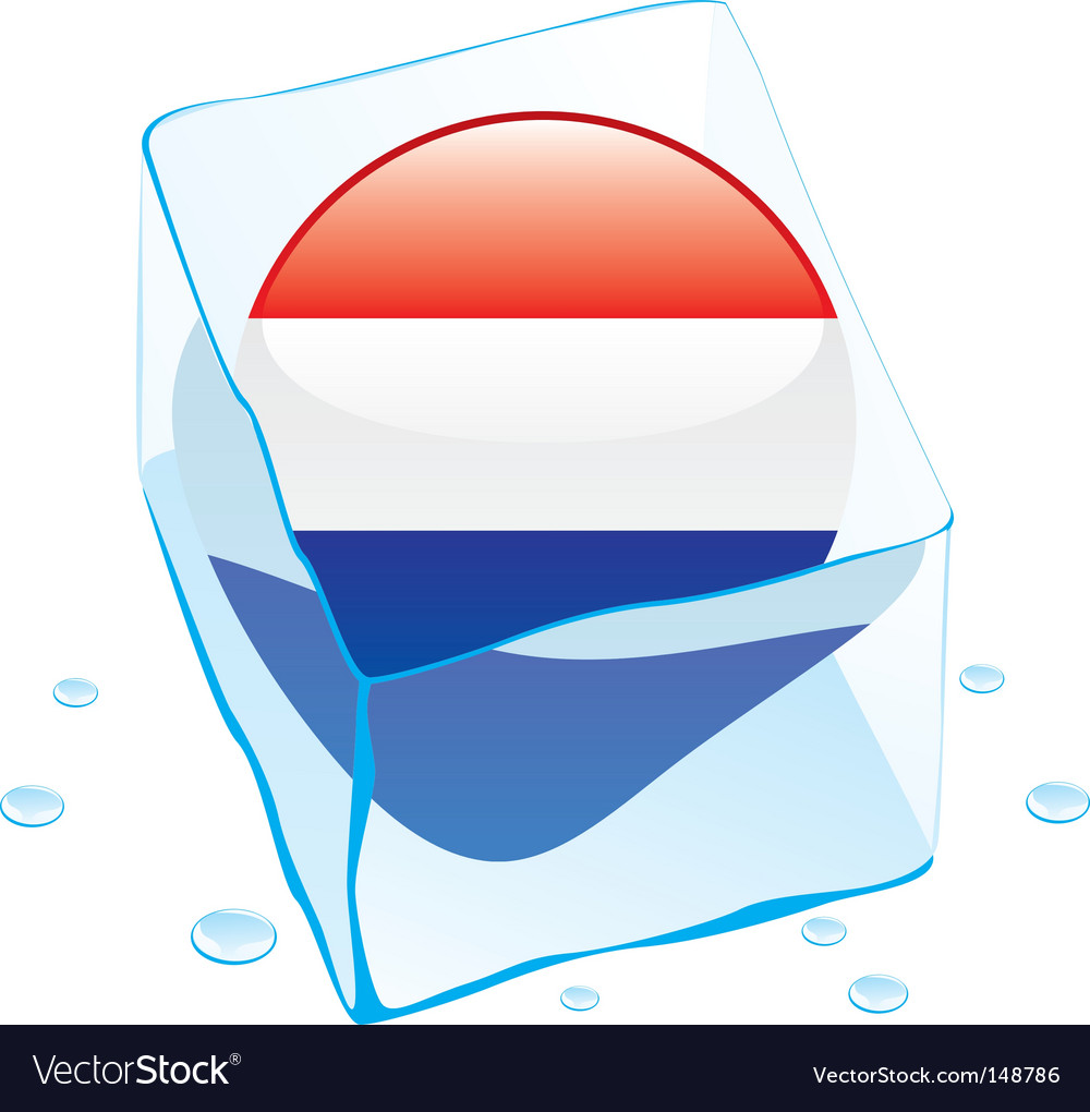 Frozen button flag of netherlands vector