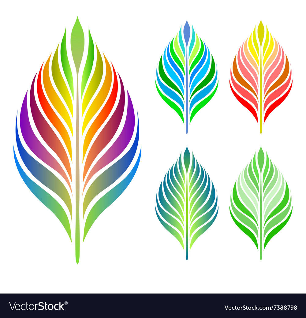 Set of leaves collection vector