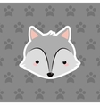 wolf over background image vector image
