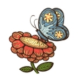 Nature spring flower with butterfly vector image