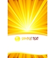sunburst card template vector image vector image