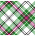 Green white tartan diagonal plaid seamless pattern vector image