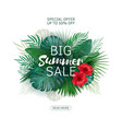 Sale banner tropical flowers leaves and plants vector image