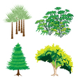 An Isometric Collection of Green Trees and Plants vector image