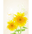 floral background with sunflower vector image