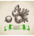 Gooseberry Hand drawn sketch berry vintage vector image