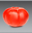 red whole tomato isolated on a transparent vector image