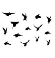 flying bird silhouettes vector image