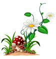 mushrooms in the garden vector image