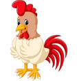 cartoon chicken rooster vector image