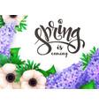 spring hand lettering label vector image