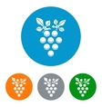 Wine branch flat icons set vector image
