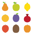 Summer Fruits Icons vector image