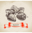 Strawberry Hand drawn sketch berry vintage vector image