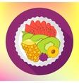 Fruit salad flat design vector image