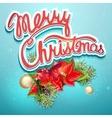 Christmas with shlyumbergom balls vector image