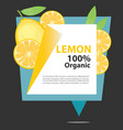 banner lemon organic vector image