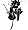 peas stencil vector image