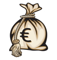 Euro Money Bag vector image vector image