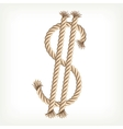 Rope dollar vector image