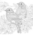 Sparrow birds vector image
