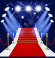 Red carpet with ladder vector image