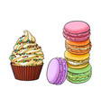 hand drawn desserts - cupcake and stack of vector image