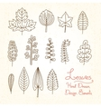 set of leaves in cartoon style vector image