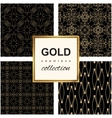 Golden line pattern set vector image